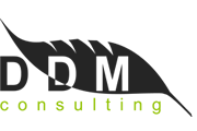 DDM Consulting
